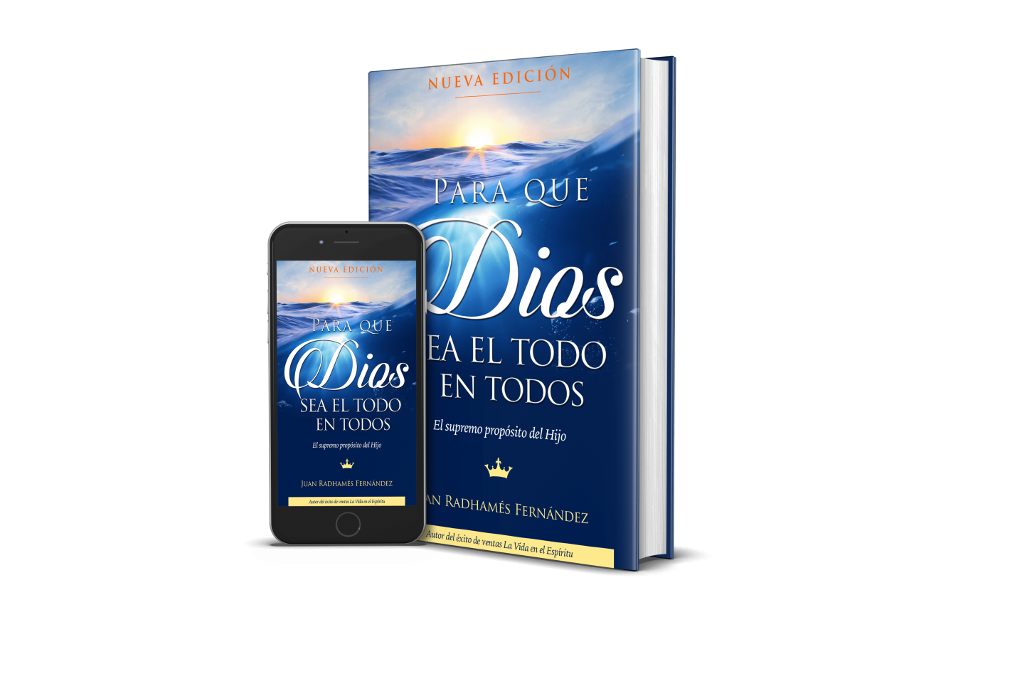 Diossea1536x560